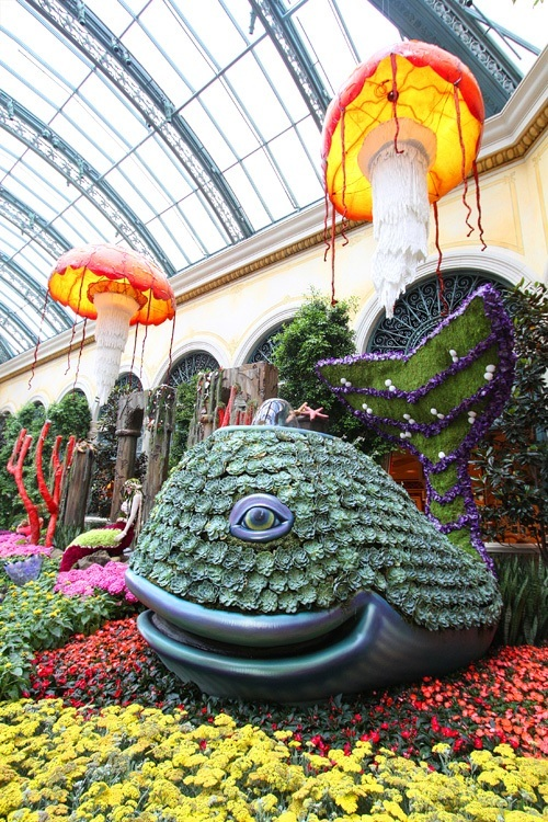Scenic Bellagio Conservatory Displays Underwater Theme With Inspiring Creating The Botanical Garden At The Bellagio Is A Massive Undertaking That  Includes  Blooming Plants Each Week Over  Tulips Are Added To  The  With Cool Vinyl Garden Trellis Also Gardening In Addition Garden Maintenance Huddersfield And Garden Heaters For Hire As Well As Plastic Garden Fencing Uk Additionally Garden Machinery Hampshire From Speedvegascom With   Inspiring Bellagio Conservatory Displays Underwater Theme With Cool Creating The Botanical Garden At The Bellagio Is A Massive Undertaking That  Includes  Blooming Plants Each Week Over  Tulips Are Added To  The  And Scenic Vinyl Garden Trellis Also Gardening In Addition Garden Maintenance Huddersfield From Speedvegascom